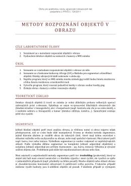 Metody rozpoznání objektů v obrazu.pdf