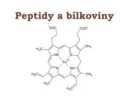 peptidy a bílkoviny.pdf