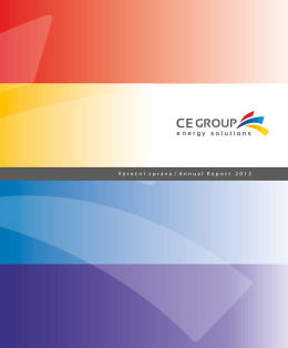 Annual report CE GROUP 2012