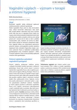 CELÝ ČLÁNEK VE FORMÁTU .pdf