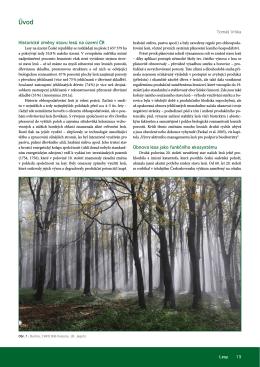 Obnova lesa jako funkčního ekosystému Historické změny stavu