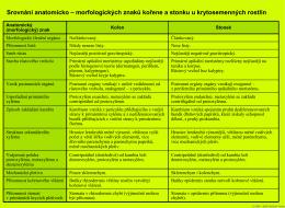 Srovnání anatomicko-morfologických znaků kořene a stonku