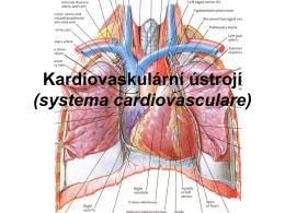 anatomie_kardio.pdf9.76 MB
