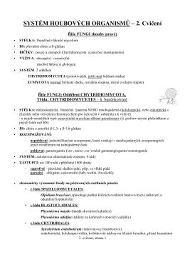 2.cvičení studijní materiály a pracovní listy