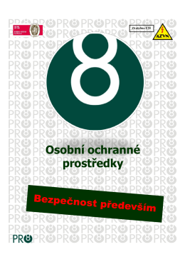 dokument pro8 OOPP Bezpečnost práce.pdf