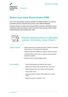 Lean Value Stream Expert