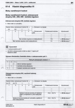 Vlastní diagnostika 6.pdf