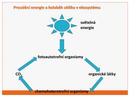 4. Mikrobiologie (pdf)