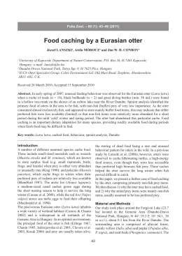 Food caching by a Eurasian otter