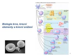 Biologie krve, krevní elementy a krevní srážení