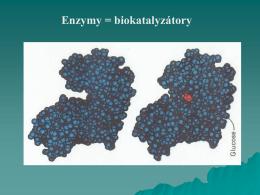 4 - Biochemie