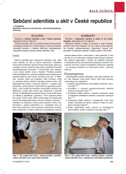 Sebózní adenitida u akit v České republice - Pes