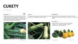 CUKETY - České biopotraviny