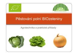 Pěstování polní BIOzeleniny [Režim kompatibility]