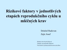Přednáška-Etapy reprodukce u krav
