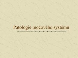 Vybrané stati patologie ledvin