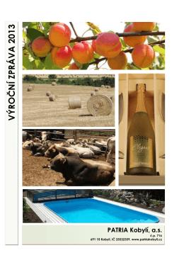 Výroční zpráva 2013 po stranu 24