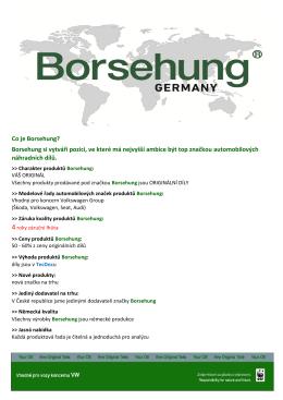 Co je Borsehung? Borsehung si vytváří pozici, ve které má nejvyšší