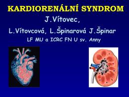 Kardiorenální syndrom 2013