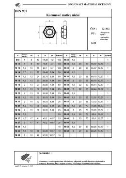 DIN 937 Korunové matice nízké