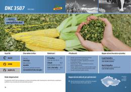 DKC 3507 - Monsanto