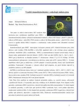 Využití imunohistochemie v onkologii nádoru prsu