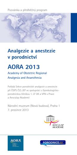 Analgezie a anestezie v porodnictví AORA 2013