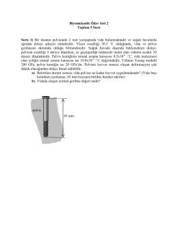 BME311 Ödev 2