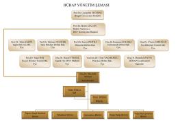 bübap yönetim şeması - Bingöl Üniversitesi