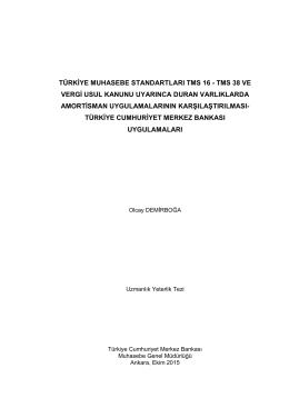 Demirboğa, Olcay Türkiye muhasebe standartları TMS 16