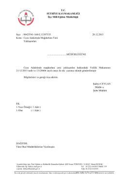 98425541-160-E.13397535 28.12.2015 Konu : Ceza Adaletind