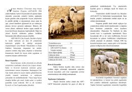 ADÜ GKYP Broşürü - Akademik Birimler