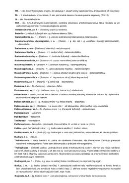 TH – 1. skr. tyrozínhydroxylázy, enzýmu, kt