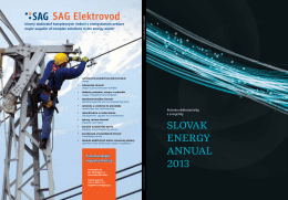 slovak energy annual 2013 - Ro?