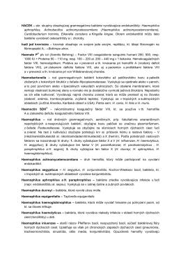 Haemophilus aphrophilus, Actinobacil