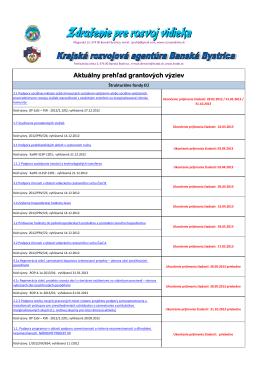 Vyzvy012013.pdf