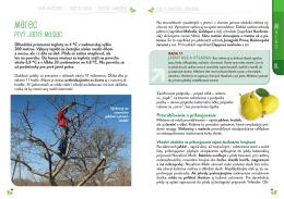 Rok v ovocnej zahrade 2014_ukazka.pdf