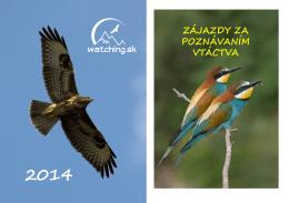 Ponuka 2014 - Watching.sk
