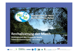 Revitalisierung der March - March-Thaya-Auen