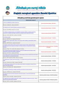 Vyzvy062013.pdf