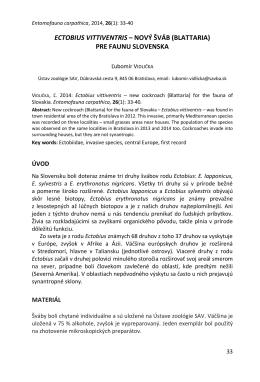 ECTOBIUS VITTIVENTRIS – NOVÝ ŠVÁB (BLATTARIA) PRE