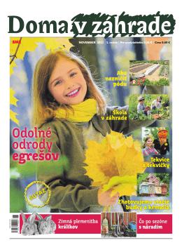 November 2013 - Doma v zahrade