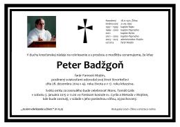 Peter Badžgoň