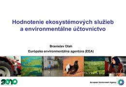Hodnotenie ekosystémových služieb a environmentálne účtovníctvo
