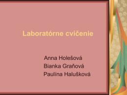 Anka Holešová, Bianka Graňová, Pavlínka Halušková