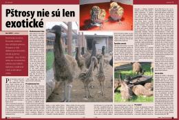 Pred časom sa stal na Slovensku módnym chov afrických pštrosov