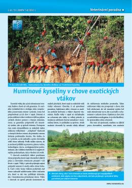 Humínové kyseliny v chove exotických vtákov