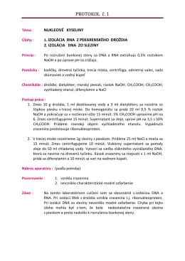 vzorovy-protokol