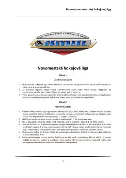 Štatút dedinskej hokejovej ligy - NMHL.SK
