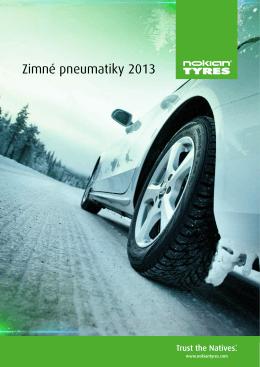 Zimné pneumatiky 2013